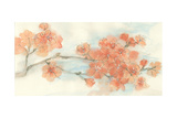 Peach Blossom I Posters by Chris Paschke