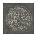 Rosette II Gray Poster by Wild Apple Portfolio