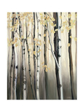 Golden Birch II Premium Giclee Print by Marilyn Hageman