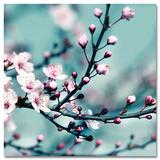 Closeup Blossom II - Sanat