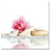 Harmony of Zen Pearls - Poster