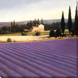 Lavender Fields Panel I Stampa su tela di J. Wiens