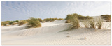 Windy Sand Dunes Posters