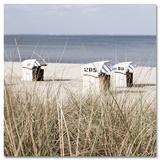 My Little Beach Chairs - Reprodüksiyon