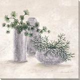 La Planta Verde Reproduction sur toile tendue par C. Ancilotti