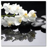 Calming Orchid Branch Kunstdruck
