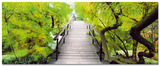 Bridge To Greenery Kunst