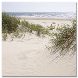 Leaving into a Sand Dune Schilderij