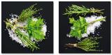 Modern Kitchen Flair I Affiches par Uwe Merkel