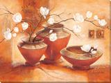 Giulietta Reproduction sur toile tendue par C. Ancilotti