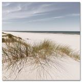 Coastal Dune Hill - Art Print
