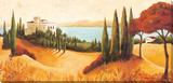Il Castillo Stretched Canvas Print by C. Ancilotti