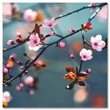 Beautiful Spring Day Stampe
