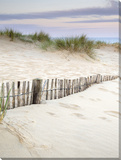 Surrounded by the sand III Stretched Canvas Print