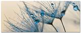 Big Dandelion Seed Schilderij