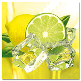Fresh Lemon & Lime Poster