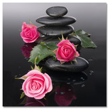 Roses On Spa Stones Poster