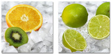Set Delicate Fruits On Ice Plakater
