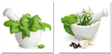 Set Cooking With Herbs Plakater