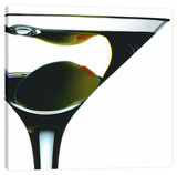 Martini Stretched Canvas Print by Barry Seidman