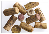 Ten Corks Stretched Canvas Print by Barry Seidman