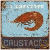 Crevette Prints by Bruno Pozzo