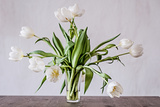 Vase of Tulips Photographic Print by Torsten Richter