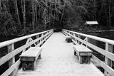Winter Scene with Wooden Foot Bridge Photographic Print by Sharon Wish