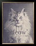 Famous Quote Cat Prints by Florent Bodart