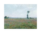 Poppy Field, 1881 Premium Giclee-trykk av Claude Monet