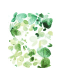 Butterfly Dance in Green C Giclee Print by Allyson Fukushima
