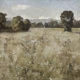 Serene Landscape II Prints by Paul Duncan