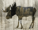 Camouflage Animals - Moose Posters by Tania Bello