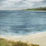Shoreline Meander Affiches par Paul Duncan