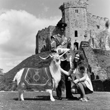 Cardiff Castle, 1969. Photographic Print by Ron Harding