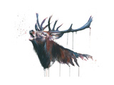 Roar Giclee Print by Sarah Stokes