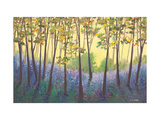 Bluebell Delights Giclee Print by Serena Sussex