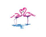 Flamingo Study Giclee Print by Sarah Stokes