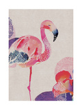 Tropical Flamingo Giclee Print by Summer Thornton