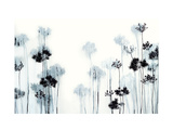 Black Stems Giclee Print by Hans Andkjaer