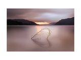 Tranquil Heart Giclee Print by Ian Winstanley