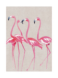 Elegant Flamingos Giclee Print by Summer Thornton