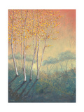 Silver Birch Tree in Autumn Giclee Print by Serena Sussex