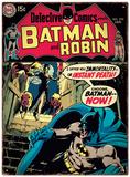 Batman - Batman & Robin Plaque en métal