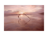 Love on the Horizon Giclee Print by Ian Winstanley