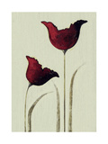 Tulips I Giclee Print by Nicola Evans