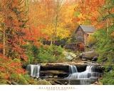 Herbstpracht Poster von Elizabeth Carmel