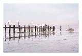 Antique Pier 103 Prints by Alan Blaustein