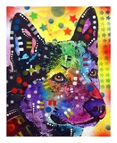 Australian Cattle Dog Prints by Dean Russo