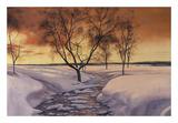 Amber Ice Prints by Diane Romanello